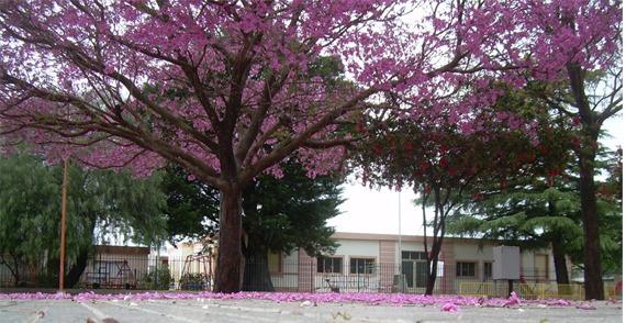 Jardín de infantes Gral. San Martin.